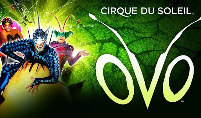 Der Cirque du Soleil kommt im November wieder nach Köln!