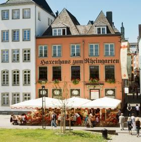 Sonnige Terrasse direkt im Rheingarten am Rhein